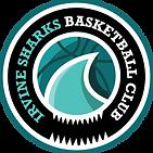 Hoop Freakz basketball partner club Irvi