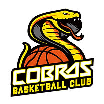 Caerphilly Cobras.jpg