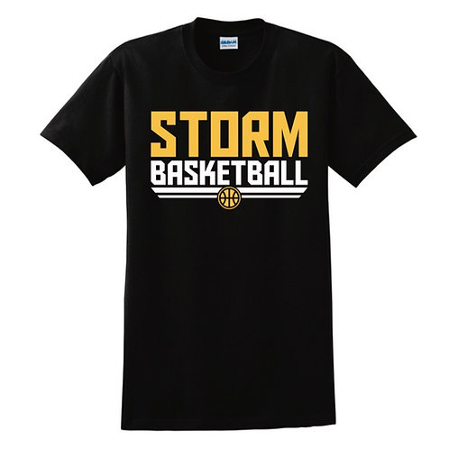 Darlington Storm T-shirt Design 2