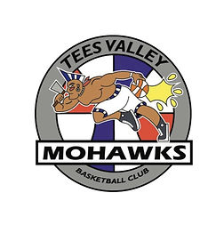 hoop freakz uk basketball teamwear tees