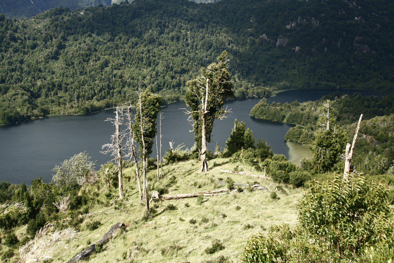 Lago Centeno.