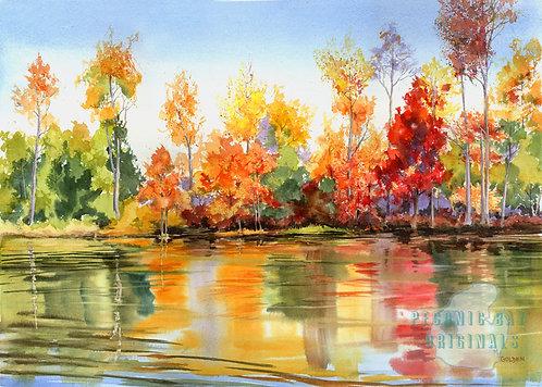 P20 Autumn Trees