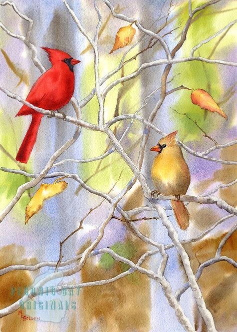 P15 Cardinals