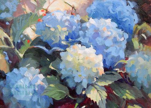 O27 Blue Beauties