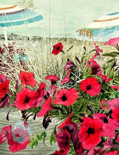 G12 Beach Petunias