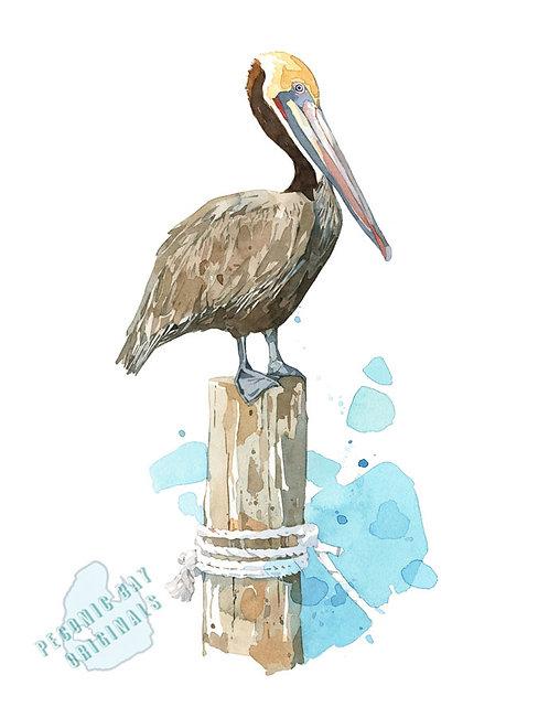 H25 Pelican