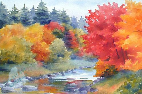Z02 Autumn Glory
