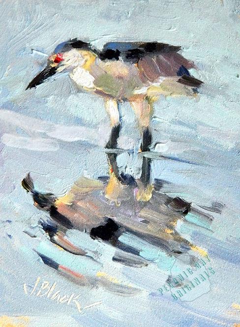 O03 Heron Fishing