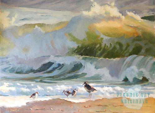 O54 Beachcombers