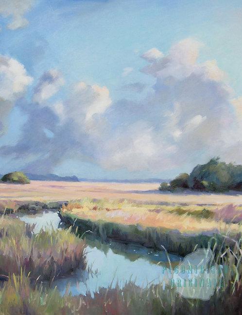 O37 Salt Marsh Vista