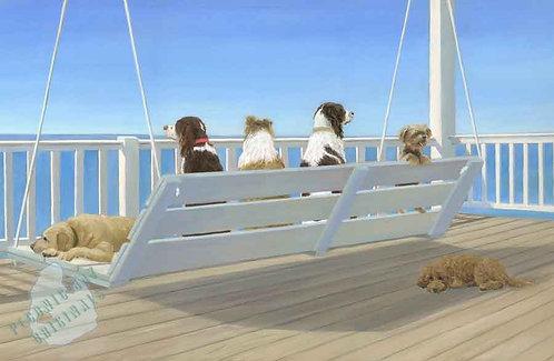 S123 Dogs on Beach Swing