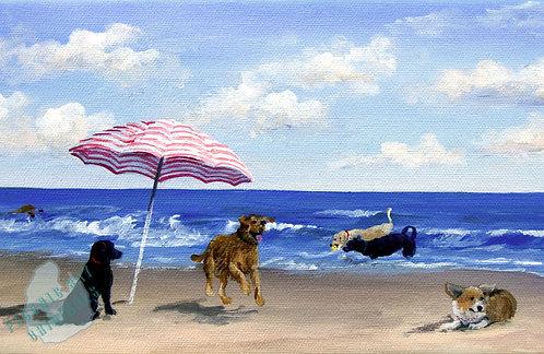S36 Beach Tails