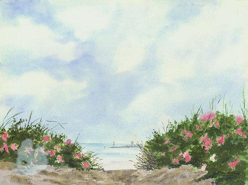 G35 June Beach