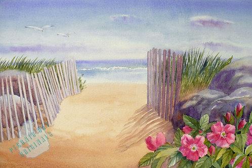 Z27 Beach Path