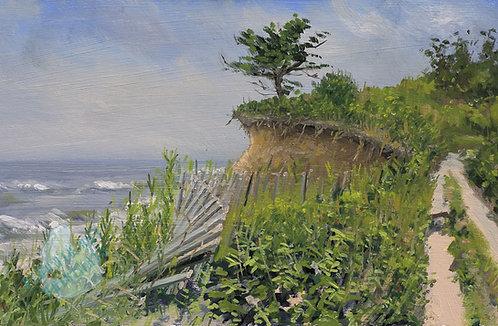 R49 Montauk Bluff