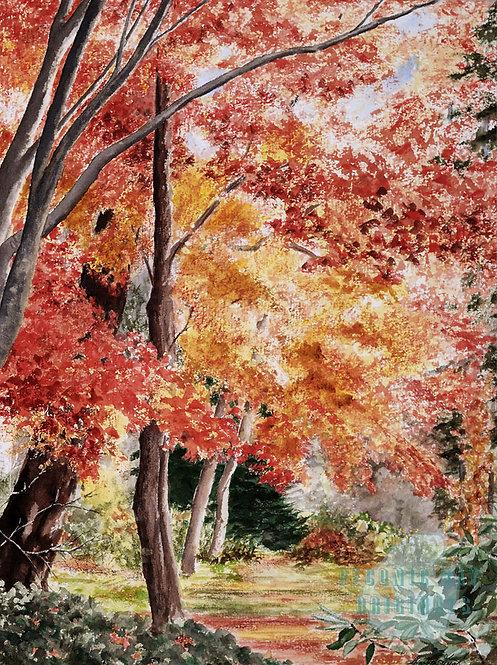G22 Autumn Walk