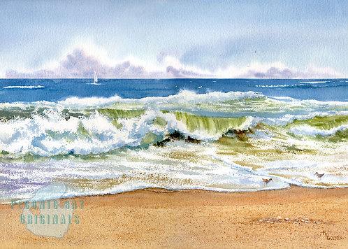 P13 Surf