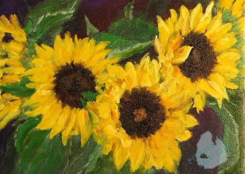 G60 September Sunflowers