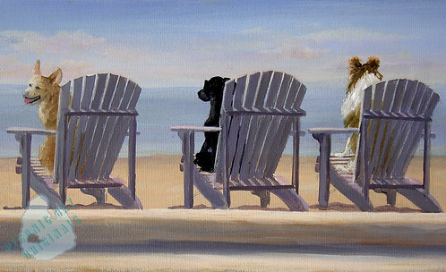S49 Bailey's Beach Chairs