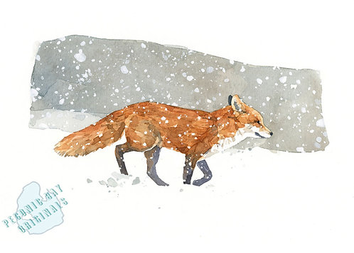 H23 Lonely Fox