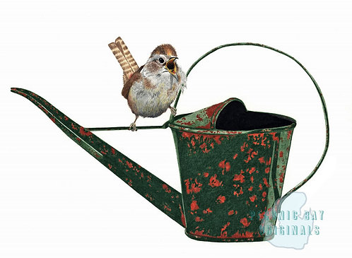 V07 Wren on Watering Can