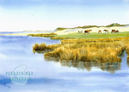 P23 Beach Horses