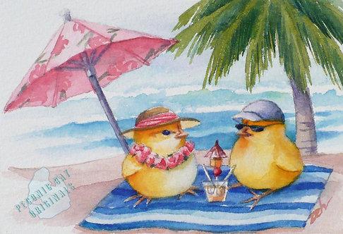 Z20 Chicklings on Beach