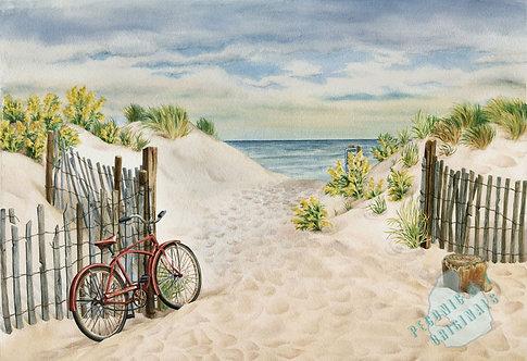 E01 Beach Bicycle