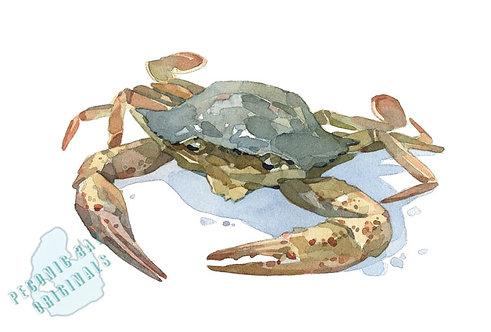 H20 Crabby Crab