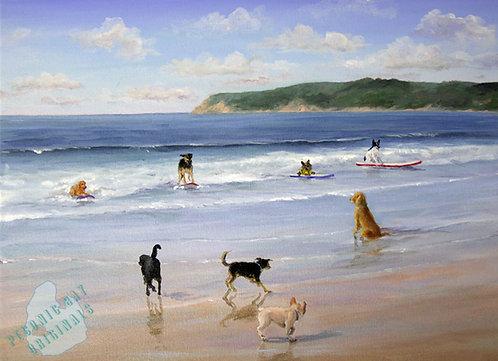 S51 Dog Beach