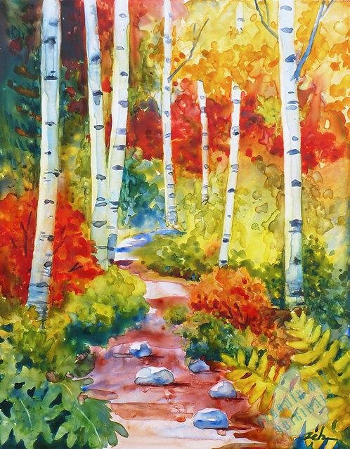 Z55 Birch Path