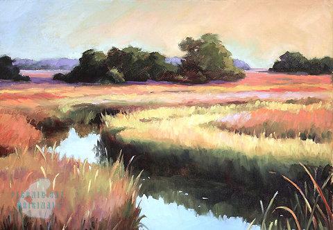 O17 Peaceful Marsh