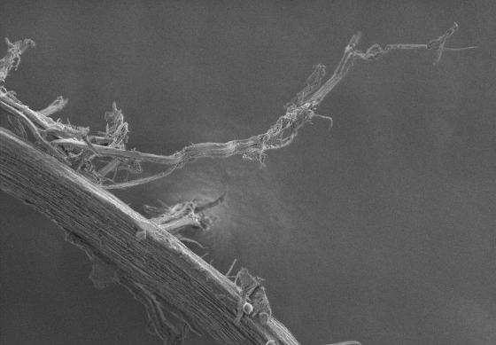 волос поврежденный силиконом