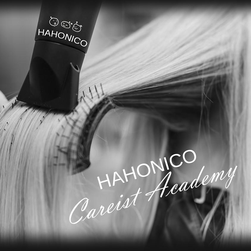 Безкоштовне індивідуальне навчання за програмою Японської академии колористики Hahonico (HAHONICO Care it Academy)
