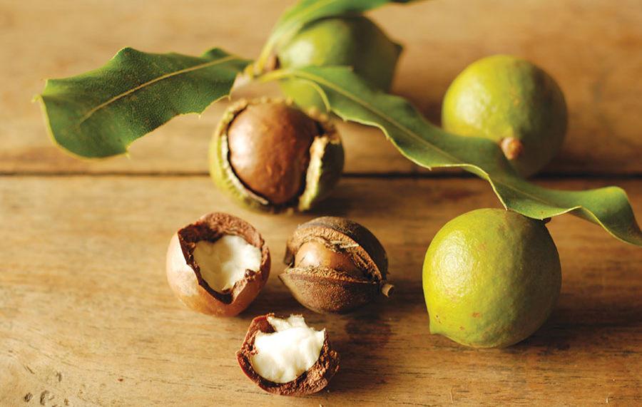 плоды кукуй дерева в японской косметике