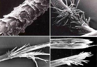 волос под микроскопом разрушенный химическими и тепловыми процедурами