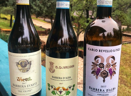 Barbera, the wine of the people