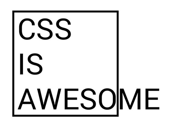 What's the reason CSS is so popular in the web world