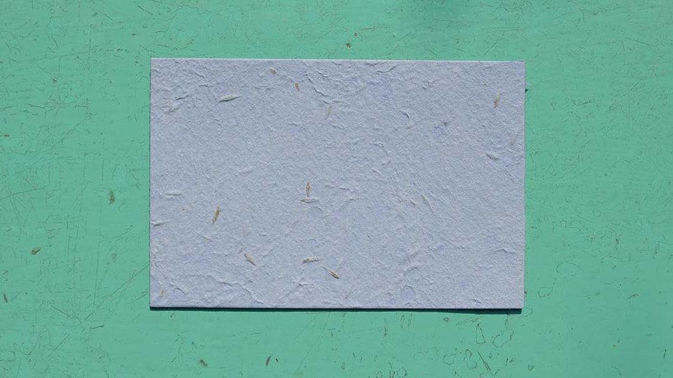 BIGL9S Biglietto rettangolare+Stampa Piantabile 13x8,5cm in Ca