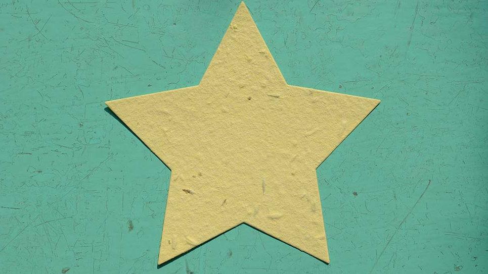 BIGL14 Biglietto Stella Piantabile 11x11 cm in Carta che
