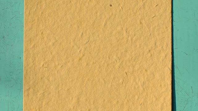 BIGL4 Biglietto quadrato Piantabile 10,5x10,5 cm in Carta che Germoglia
