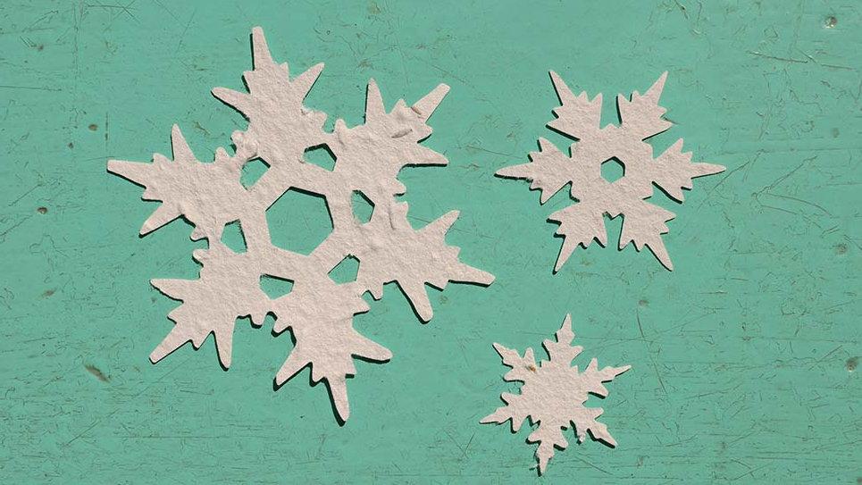 NEVE1 Cristallo di neve Piantabile di varie misure in Carta che Germoglia