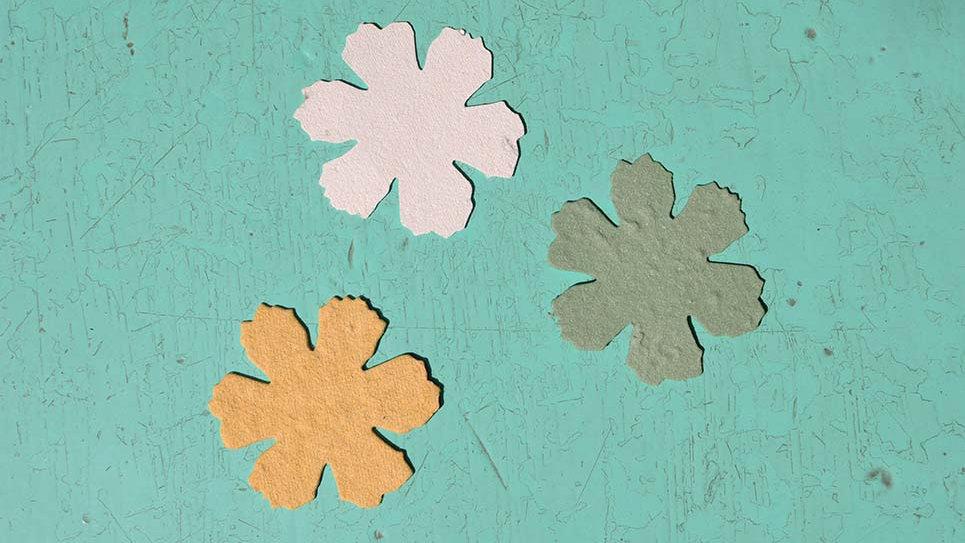 F2 Fiore Piantabile 4,5x4,5 cm in Carta che Germoglia
