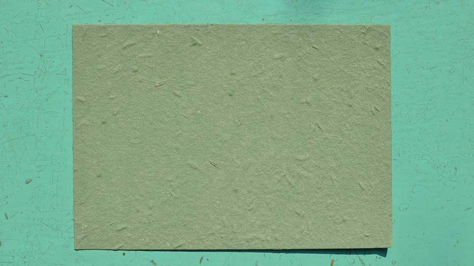BIGL10S Biglietto rettangolare+Stampa Piantabile 14,5x10,5 cm in Carta che Germ