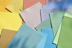 fogli carta piantabile redacia