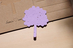 albero in carta piantabile