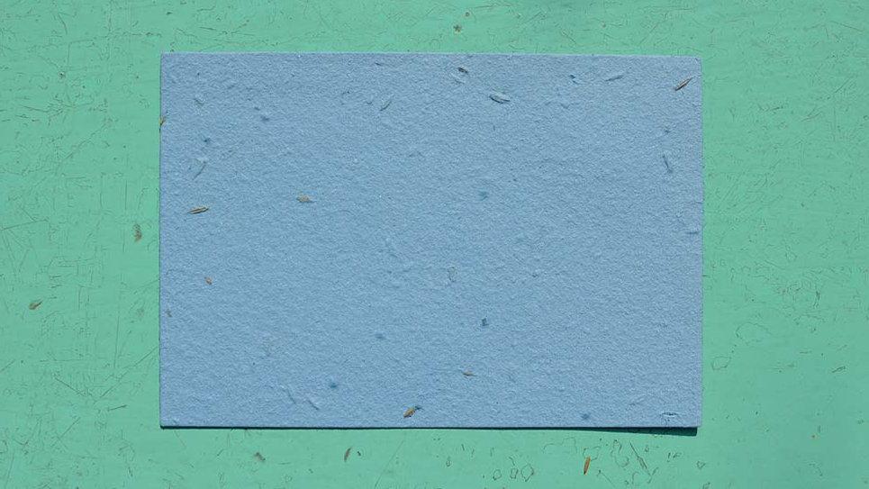 BIGL8S Biglietto Piantabile+Stampa 13,5x9,5 cm in Carta che Germoglia