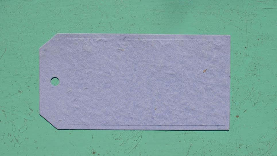 BIGL13 Biglietto Tag Piantabile 16x8 cm in Carta che Germ