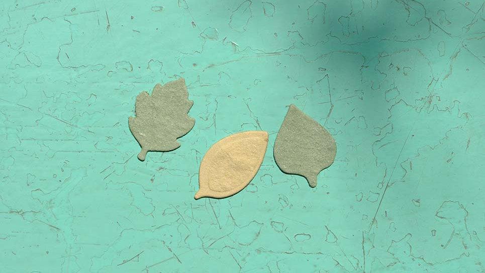 FOG1 Foglie Piantabili 2,5x1,5 cm in Carta che Germoglia