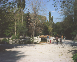The presidential gardens